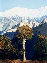 Himalayan Series: Prints